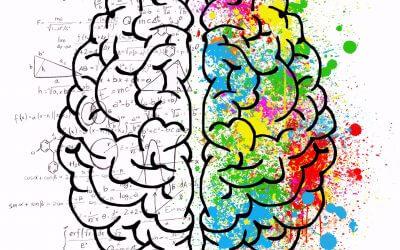 Wie Dir Dein widersinniges Gehirn das Geld aus der Tasche zieht und wie Du es verhindern kannst