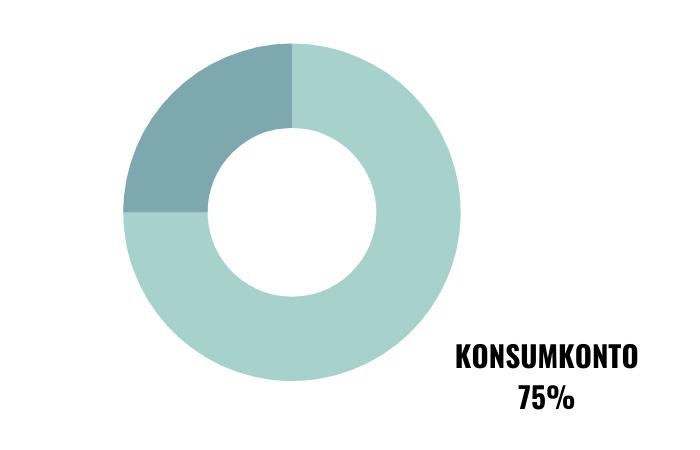 2-Konten-Modell – Konsumkonto